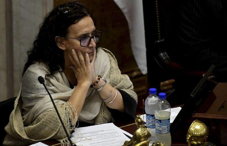 Michetti creó el comité de violencia género por el caso Alperovich