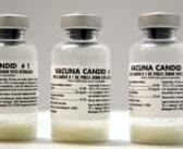 Aprobaron el primer lote de más de 77 mil dosis de la vacuna Candid 1